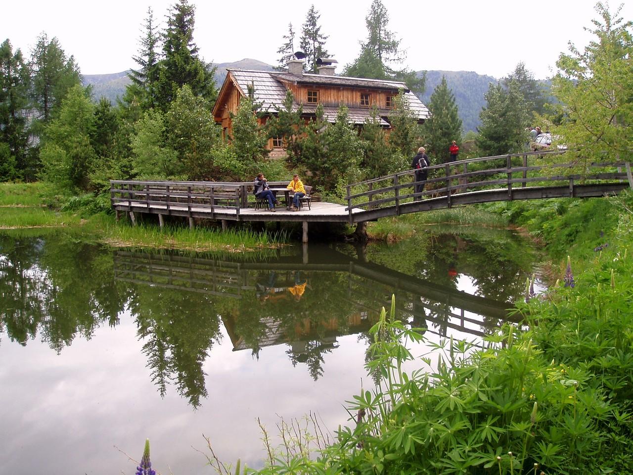 Warsztaty ekologiczne nad jeziorem